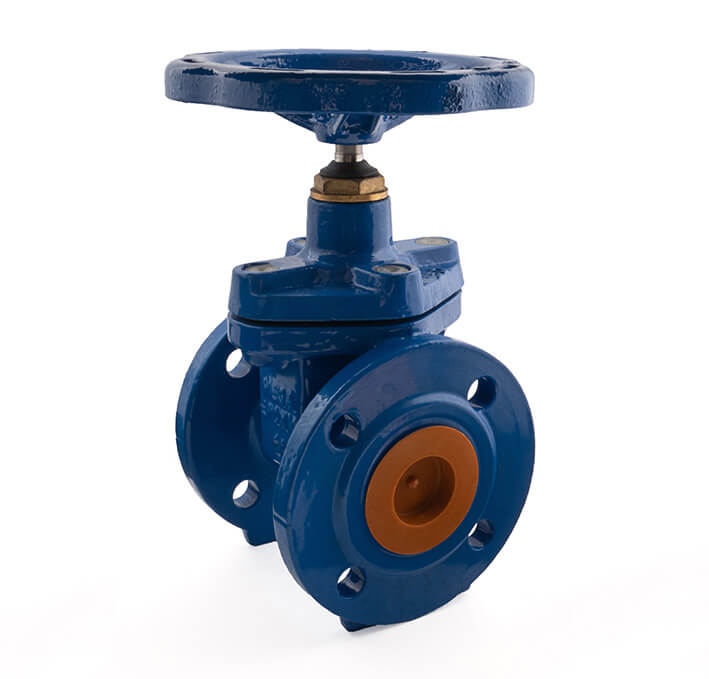 2 Inch - 63mm Epoxy (Rilsan) Coated Gate Valve